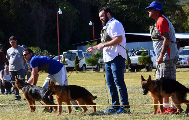 Exitoso campeonato de crianza de perros y exposición canina en Jinotega