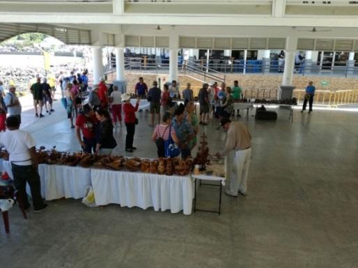 Nicaragua recibe crucero Island Princess (2)