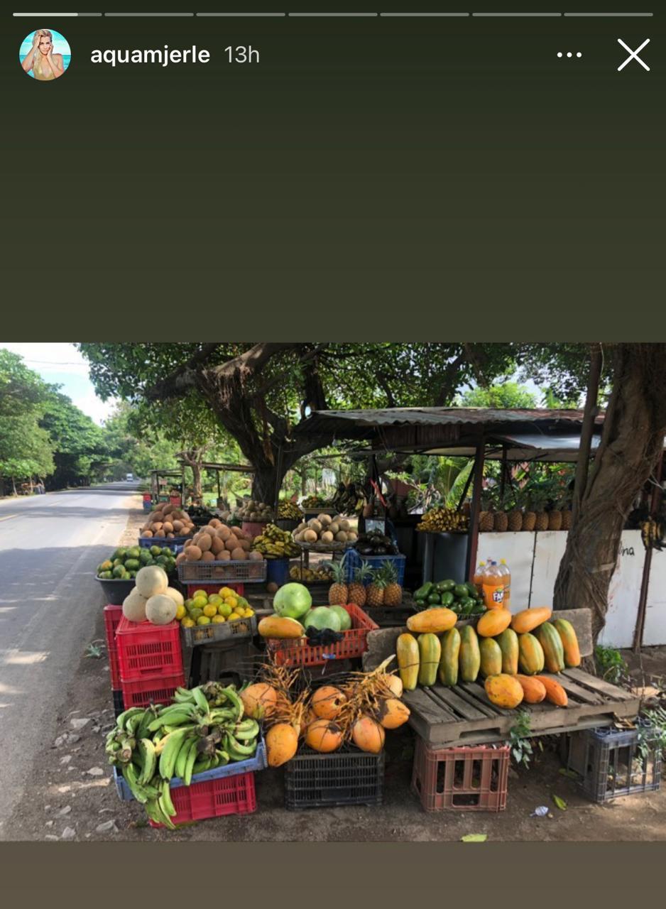 Merle-Liivand-en-Nicaragua